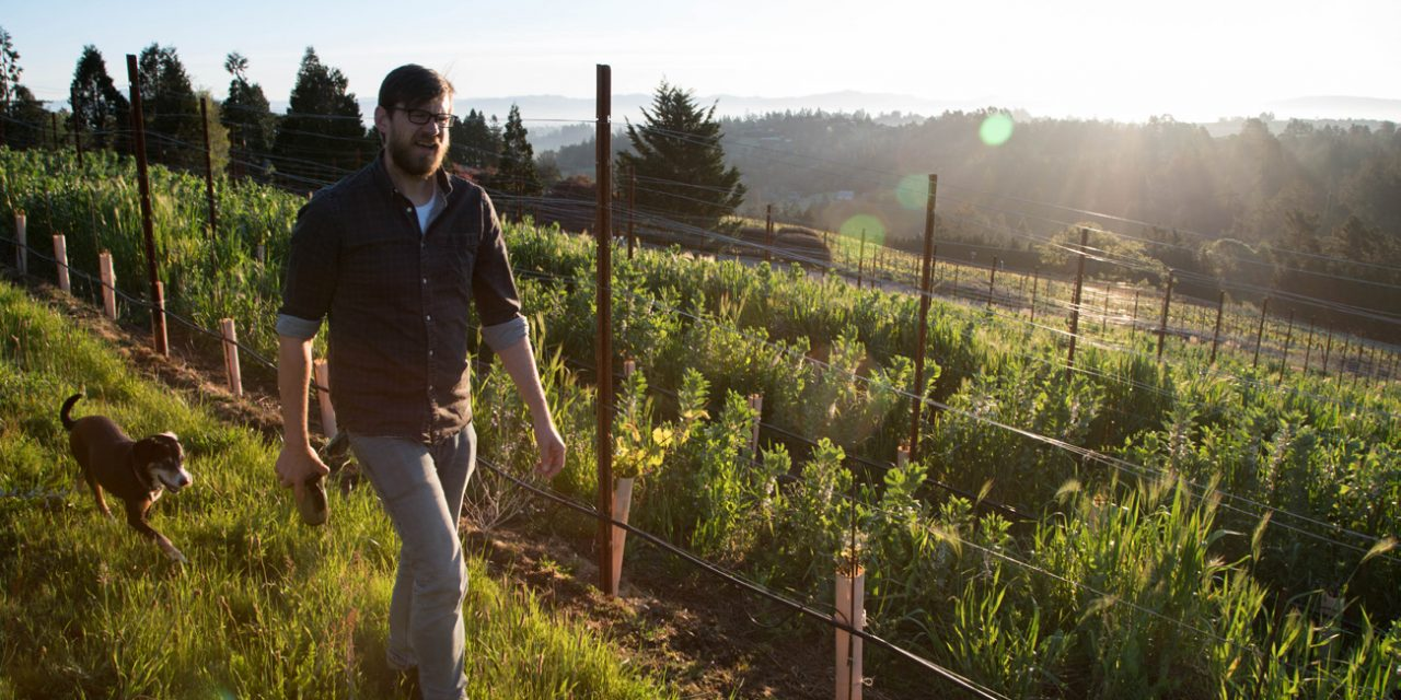 Coaxing Pinot Noir to Be Its Best Self, Web Marquez '97